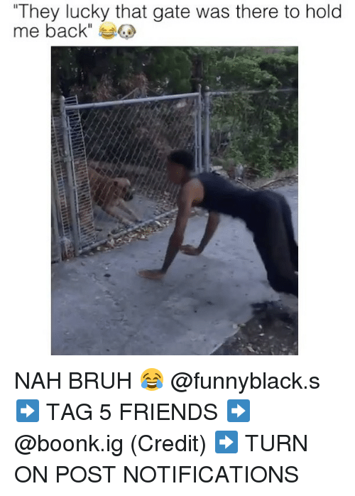 "Nah Bruh: ""They lucky that gate was there to hold  me back"" NAH BRUH 😂 @funnyblack.s ➡️ TAG 5 FRIENDS ➡️ @boonk.ig (Credit) ➡️ TURN ON POST NOTIFICATIONS"