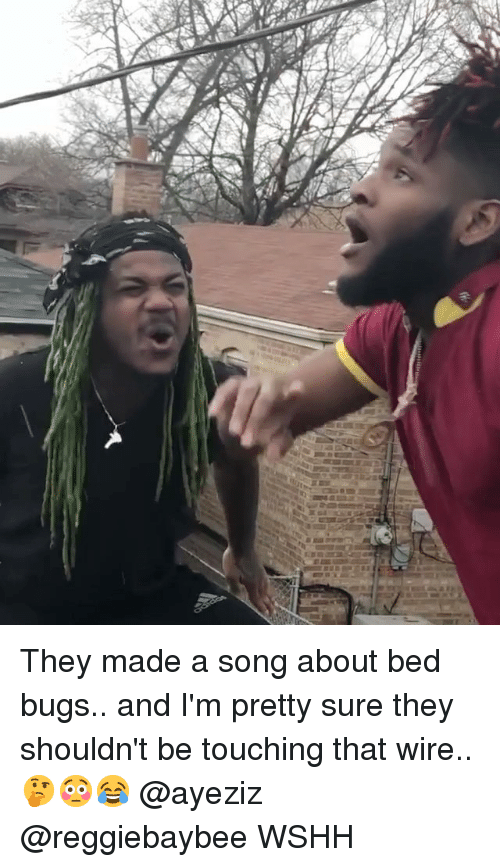 Memes, Wshh, and Bed Bugs: They made a song about bed bugs.. and I'm pretty sure they shouldn't be touching that wire.. 🤔😳😂 @ayeziz @reggiebaybee WSHH