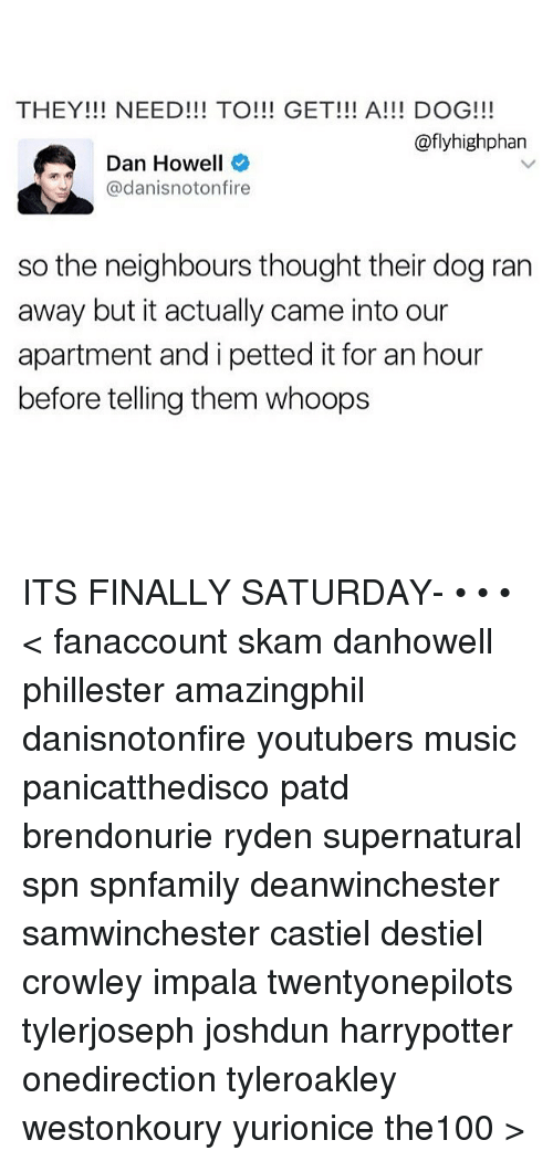 Memes, Music, and 🤖: THEY!!! NEED!!! TO GET!!! A!!! DOG!!!  @fly high phan  Dan Howell  @danisnoton fire  so the neighbours thought their dog ran  away but it actually came into our  apartment and i petted it for an hour  before telling them whoops ITS FINALLY SATURDAY- • • • < fanaccount skam danhowell phillester amazingphil danisnotonfire youtubers music panicatthedisco patd brendonurie ryden supernatural spn spnfamily deanwinchester samwinchester castiel destiel crowley impala twentyonepilots tylerjoseph joshdun harrypotter onedirection tyleroakley westonkoury yurionice the100 >