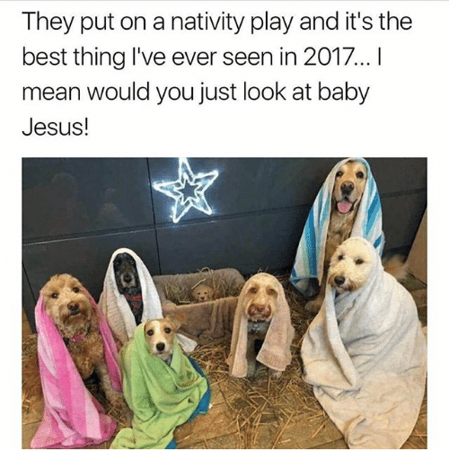 Jesus, Memes, and Best: They put on a nativity play and it's the  best thing I've ever seen in 2017 !  mean would you just look at baby  Jesus!