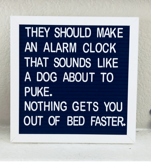 puke: THEY SHOULD MAKE  AN ALARM CLOCK  THAT SOUNDS LIKE  A DOG ABOUT TO  PUKE.  NOTHING GETS YOU  OUT OF BED FASTER.