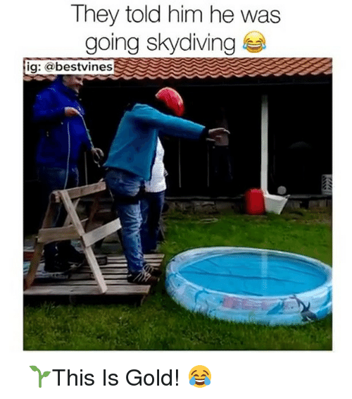 Memes, Best, and Vines: They told him he was  going Skydiving  ig: a best vines ⠀ 🌱This Is Gold! 😂