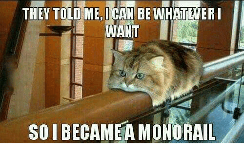Grumpy Cat, Monorail, and  Told Me: THEY TOLD ME I CAN BE WHATEVER I  WANT  SO IBECAMEA MONORAIL