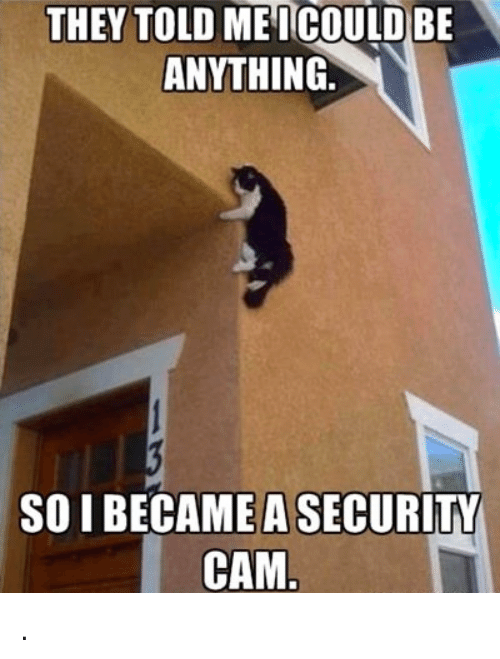 Memes, 🤖, and Cam: THEY TOLD ME ICOULD BE  ANYTHING  SO I BECAME A SECURITY  CAM. .