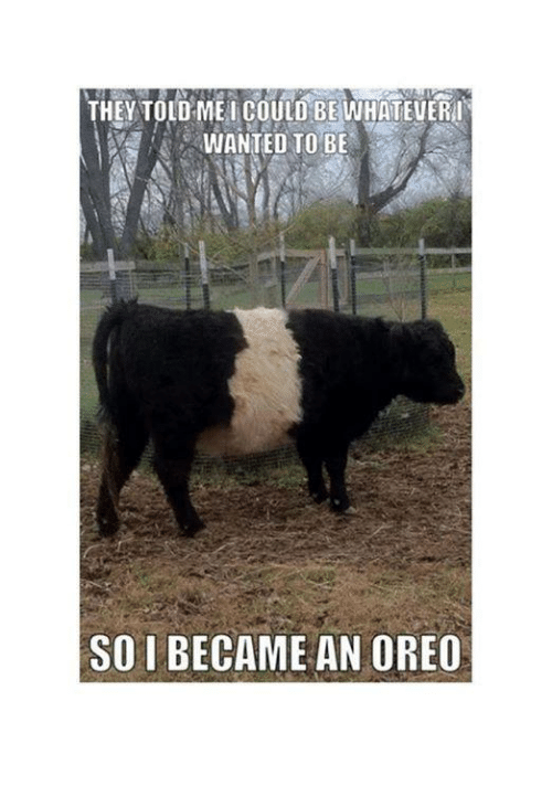 Memes, 🤖, and Oreo: THEY TOLD ME l COULD BE WHATEUERHI  WANTED TO BE  SO I BECAME AN OREO