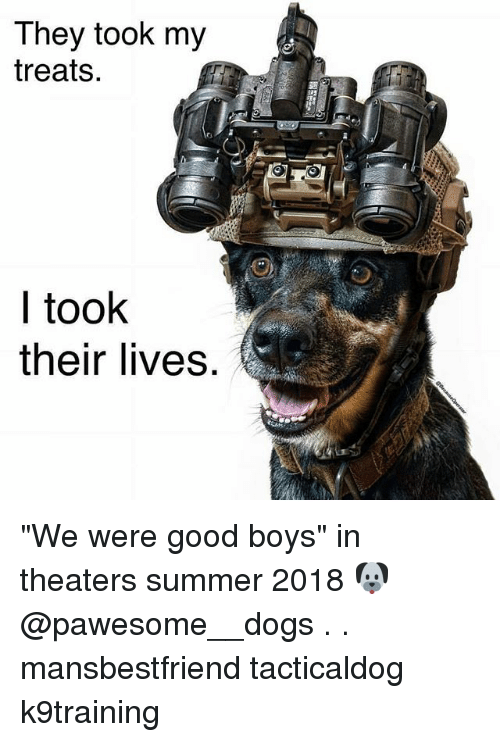 "Dogs, Memes, and Summer: They took my  treats.  I took  their lives ""We were good boys"" in theaters summer 2018 🐶 @pawesome__dogs . . mansbestfriend tacticaldog k9training"