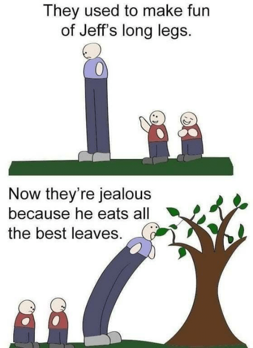 jealous: They used to make fun  of Jeff's long legs.  Now they're jealous  because he eats all  the best leaves.