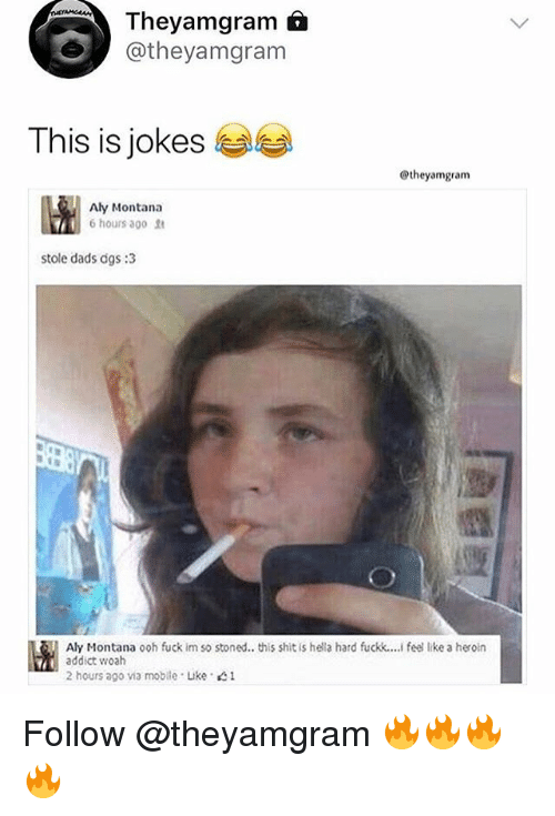 Shit, Fuck, and Jokes: Theyamgram f  @theyamgram  This is jokes  @theyamgram  Aly Montana  6 hours ago  stole dads dgs:3  Aly Montana ooh fuck im so stoned.. this shit is hela hard fuckk.... feel like a heron  addict woah  2 hours ago va mobile . Like 1 Follow @theyamgram 🔥🔥🔥🔥