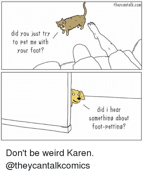 Funny, Weird, and Girl Memes: theycantalk.com  did you just try/  to pet me with  your foot?  did i hear  something about  foot-petting? Don't be weird Karen. @theycantalkcomics