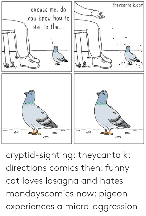 funny cat: theycantalk.com  excuse me, do  you know how to  9et to the  M. cryptid-sighting:  theycantalk: directions comics then: funny cat loves lasagna and hates mondayscomics now: pigeon experiences a micro-aggression