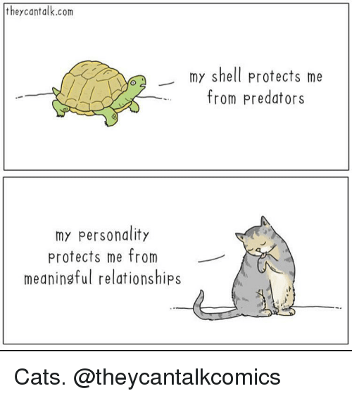 Cats, Funny, and Relationships: theycantalk.com  my shell protects me  from predators  my personality  protects me from  meaningful relationships Cats. @theycantalkcomics