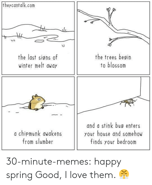stink: theycantalk.com  VI  the last signs of  winter melt awdy  the trees besin  to blossom  a chipmunk awakens  from slumber  and a stink bug enters  your house and somehow  finds your bedroom 30-minute-memes:  happy spring  Good, I love them. 😤