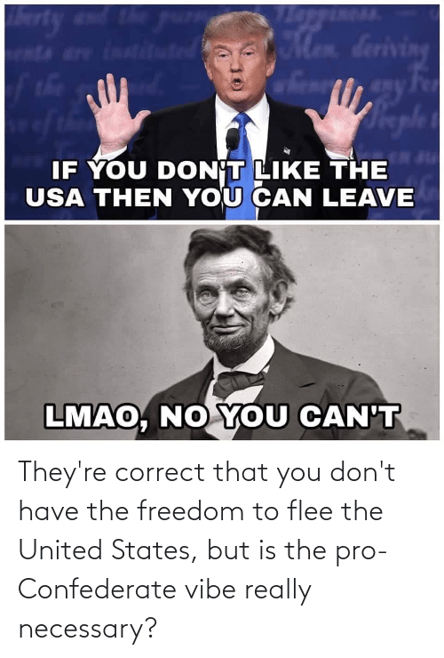 flee: They're correct that you don't have the freedom to flee the United States, but is the pro-Confederate vibe really necessary?