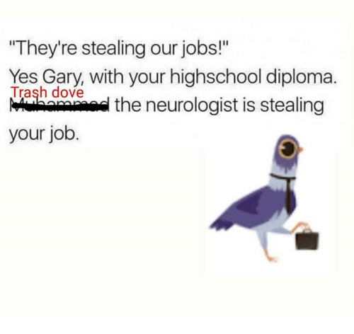 "Memes, 🤖, and Neurologist: ""They're stealing our jobs!""  Yes Gary, with your highschool diploma.  Trash dove  the neurologist is stealing  your job"