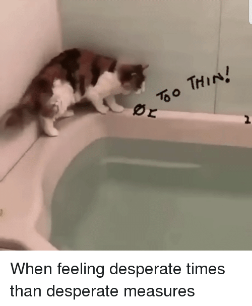 Desperate, Call, and Times: THIN  2 When feeling desperate times than desperate measures