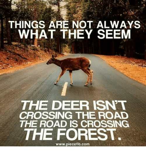 Deer, Memes, and The Road: THINGS ARE NOT ALWAYS  WHAT THEY SEEM  THE DEER ISNT  CROSSING THE ROAD  THE ROAD IS CROSSING  THE FOREST  www.piecefib.com
