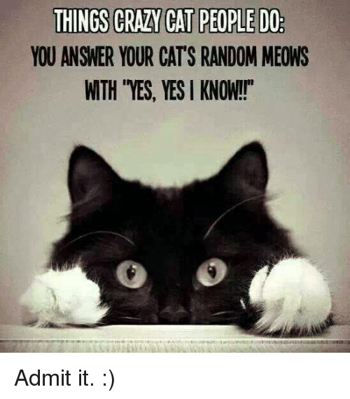 """crazy cats: THINGS CRAZY CAT PEOPLEDO  YOU ANSWER YOUR CATS RANDOM MEONS  WTH YES, YES KNOW!!"""" Admit it. :)"""
