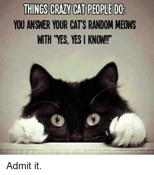 """crazy cats: THINGS CRAZY CAT PEOPLEDO  YOU ANSWER YOUR CATS RANDOM MEONS  WTH YES, YES KNOW!!"""" Admit it."""