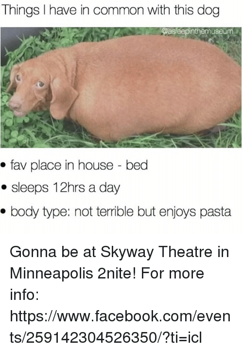 Facebook, Memes, and Common: Things have in common with this dog  @asleepinthemuseum  fav place in house bed  sleeps 12hrs a day  body type: not terrible but enjoys pasta Gonna be at Skyway Theatre in Minneapolis 2nite! For more info: https://www.facebook.com/events/259142304526350/?ti=icl