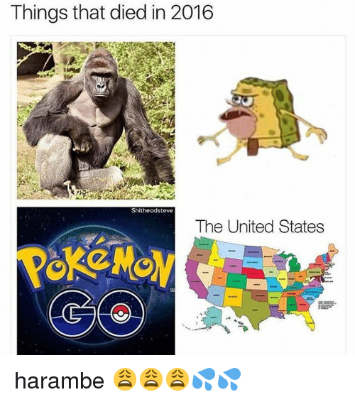 memes: Things that died in 2016  Shitheadsteve  The United States harambe 😩😩😩💦💦