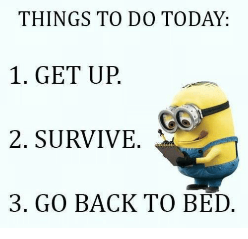 THINGS TO DO TODAY 1 GET UP 2 SURVIVE 3 GO BACK TO BED ...  Go To Bed Meme