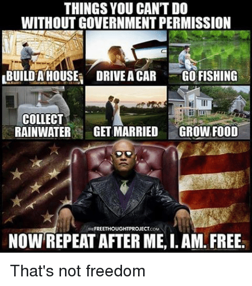 Memes, 🤖, and Project: THINGS YOU CANTDO  WITHOUT GOVERNMENT PERMISSION  LBUILDHA HOUSE DRIVEACAR GO FISHING  COLLECT  RAINWATER  GETMARRIED  GROWN FOOD  FREE THOU  GHT PROJECT  NOW REPEAT AFTER ME, I. AM. FREE. That's not freedom