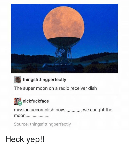 Radio, Dish, and Moon: thingsfittingperfectly  The super moon on a radio receiver dish  nick fuckface  mission accomplish boys  we caught the  mOOn....................  Source: thingsfittingperfectly Heck yep!!