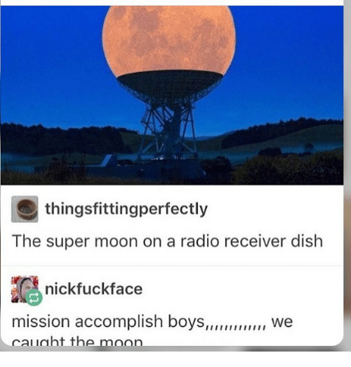 Ironic, Radio, and Dish: thingsfittingperfectly  The super moon on a radio receiver dish  nickfuckface  mission accomplish boys  we  cal laht the moon
