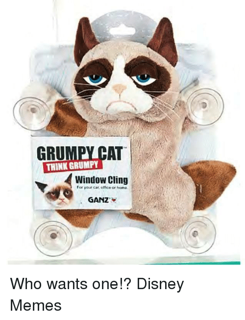Thinking Cat: THINK CAT  GRU  GRUMPY  Window Cling  or home.  GANZ Who wants one!?
