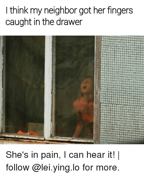Memes, Neighbors, and 🤖: think my neighbor got her fingers  caught in the drawer She's in pain, I can hear it! | follow @lei.ying.lo for more.