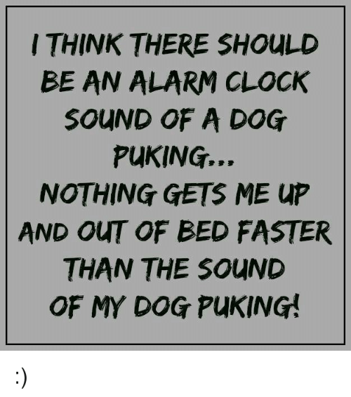 Clock, Memes, and Alarm: THINK THERE SHOULD  BE AN ALARM CLOCK  SOUND OF A DOG  PuKING...  NOTHING GETS ME up  AND OUT OF BED FASTER  THAN THE SOUND  OF MY DOG PuKING! :)