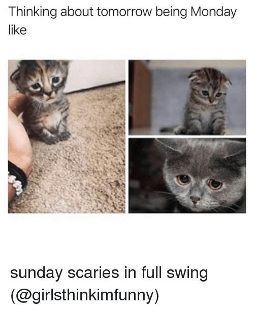 Memes, Tomorrow, and Monday: Thinking about tomorrow being Monday  like sunday scaries in full swing (@girlsthinkimfunny)