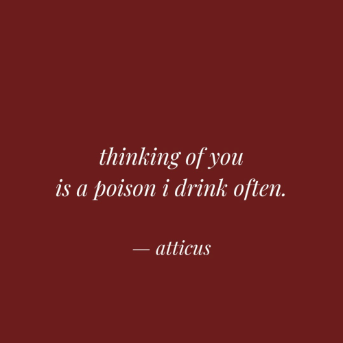 thinking of you: thinking of you  is a poison i drink often.  atticus
