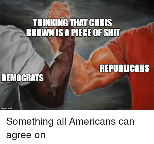 A Piece Of Shit: THINKING THAT CHRIS  BROWNIS A PIECE OF SHIT  REPUBLICANS  DEMOCRATS Something all Americans can agree on