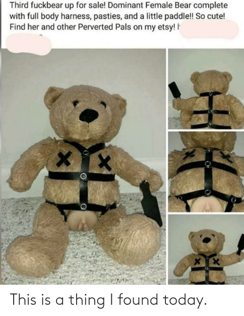 pasties: Third fuckbear up for sale! Dominant Female Bear complete  with full body harness, pasties, and a little paddle!! So cute!  Find her and other Perverted Pals on my etsy! F This is a thing I found today.