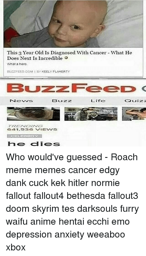 Roach Meme: This 3 Year Old Is Diagnosed With Cancer What He  Does Next Is Incredible o  What a hero.  Buz FEED COM I BY KEELY FLAHERTY  B uzz  Life Who would've guessed - Roach meme memes cancer edgy dank cuck kek hitler normie fallout fallout4 bethesda fallout3 doom skyrim tes darksouls furry waifu anime hentai ecchi emo depression anxiety weeaboo xbox