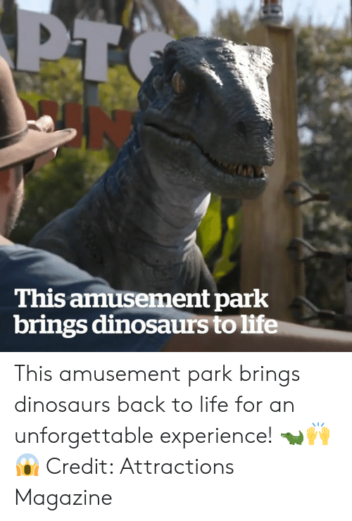 Amusement: This amusement park  brings dinosaurs to life This amusement park brings dinosaurs back to life for an unforgettable experience! 🐊🙌😱  Credit: Attractions Magazine