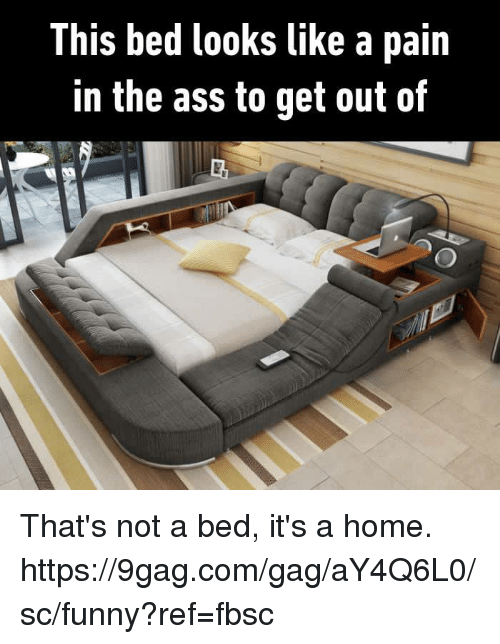 Pain In The Ass: This bed looks like a pain  in the ass to get out of That's not a bed, it's a home. https://9gag.com/gag/aY4Q6L0/sc/funny?ref=fbsc