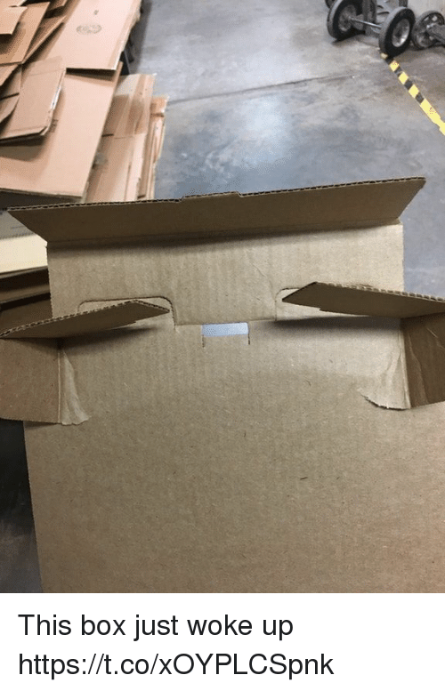 Faces-In-Things, Box, and This: This box just woke up https://t.co/xOYPLCSpnk