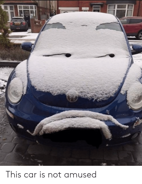 Not Amused: This car is not amused