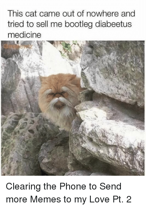 bootleg: This cat came out of nowhere and  tried to sell me bootleg diabeetus  medicine Clearing the Phone to Send more Memes to my Love Pt. 2