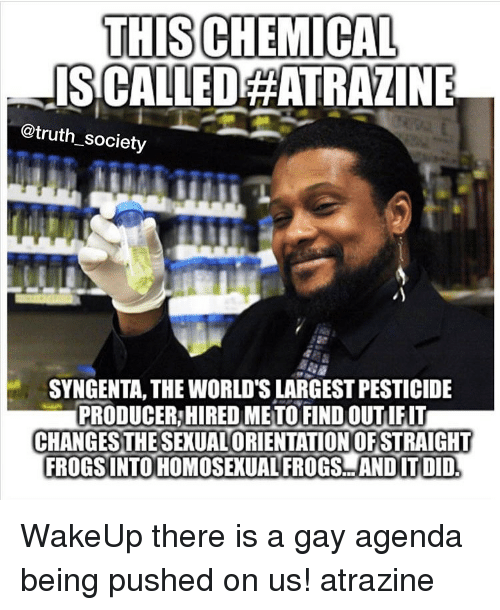 syngenta: THIS CHEMICAL  ISCALLEDAATRAZINE  @truth society  SYNGENTA, THE WORLD'S LARGEST PESTICIDE  PRODUCER!HIRED METO FIND OUTIFIT  CHANGES THE SEXUALORIENTATIONOFSTRAIGHT  FROGSINTO HOMOSEXUAL FROGS ANDIT DID WakeUp there is a gay agenda being pushed on us! atrazine