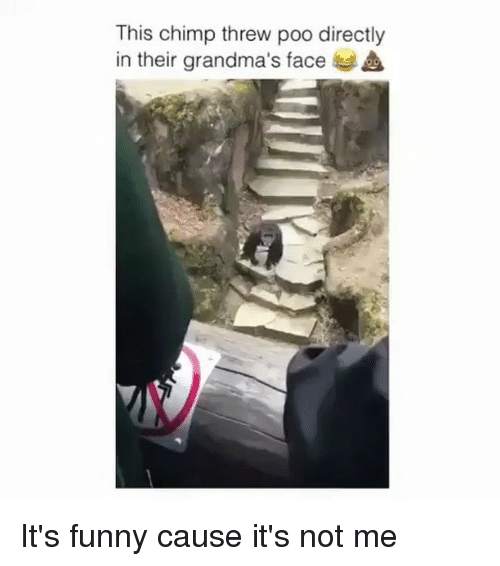 Chimp: This chimp threw poo directly  in their grandma's face It's funny cause it's not me