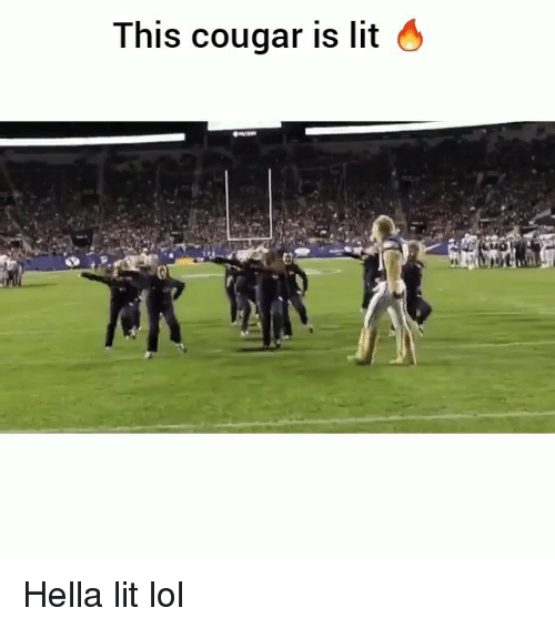 Funny, Lit, and Lol: This cougar is lit 4 Hella lit lol