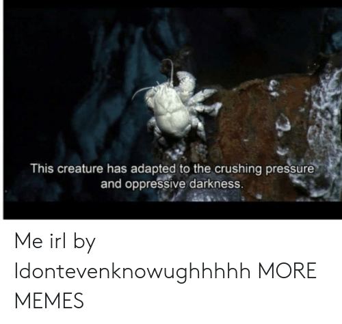 oppressive: This creature has adapted to the crushing pressure  and oppressive darkness. Me irl by Idontevenknowughhhhh MORE MEMES