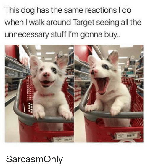 Funny, Memes, and Target: This dog has the same reactions I do  when I walk around Target seeing all the  unnecessary stuff I'm gonna buy.. SarcasmOnly