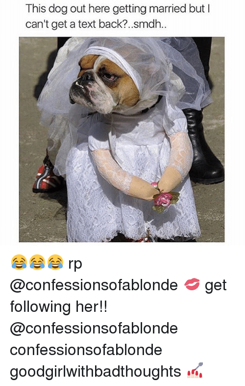 Cant Get A Text Back: This dog out here getting married but I  can't get a text back?..smdh.. 😂😂😂 rp @confessionsofablonde 💋 get following her!! @confessionsofablonde confessionsofablonde goodgirlwithbadthoughts 💅🏻