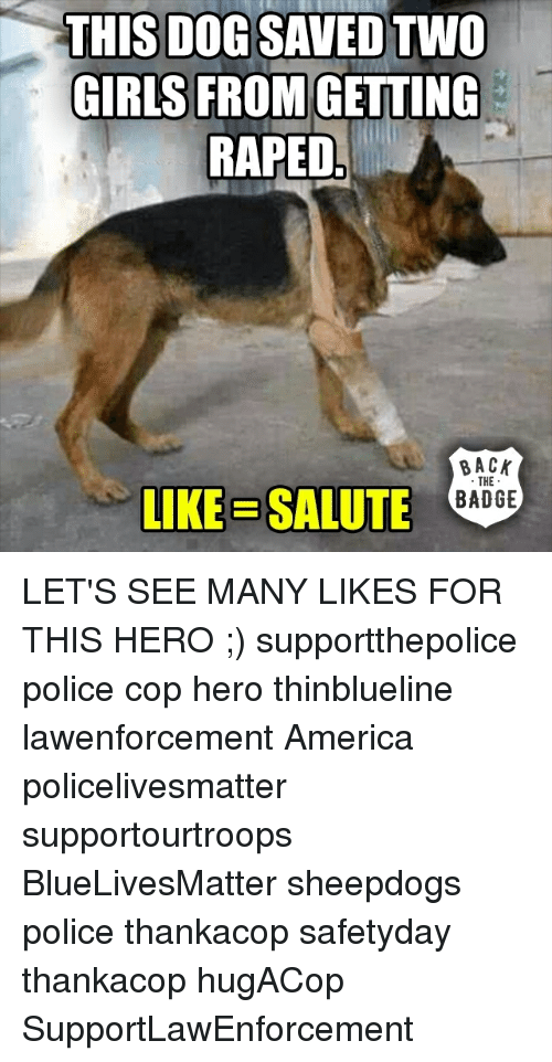 saluteing: THIS DOG SAVED TWO  GIRLS FROM  GETTING  RAPED  BACK  THE  LIKE SALUTE  BADGE LET'S SEE MANY LIKES FOR THIS HERO ;) supportthepolice police cop hero thinblueline lawenforcement America policelivesmatter supportourtroops BlueLivesMatter sheepdogs police thankacop safetyday thankacop hugACop SupportLawEnforcement