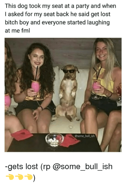 Bitch, Fml, and Memes: This dog took my seat at a party and when  I asked for my seat back he said get lost  bitch boy and everyone started laughing  at me fml  @some_bull_ish -gets lost (rp @some_bull_ish 👈👈👈)