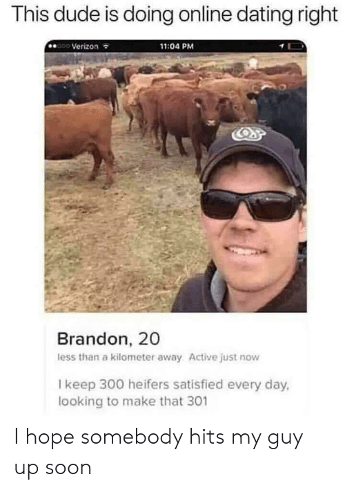 My Guy: This dude is doing online dating right  Verizon  11:04 PM  Brandon, 20  less than a kilometer away Active just now  I keep 300 heifers satisfied every day,  looking to make that 301 I hope somebody hits my guy up soon